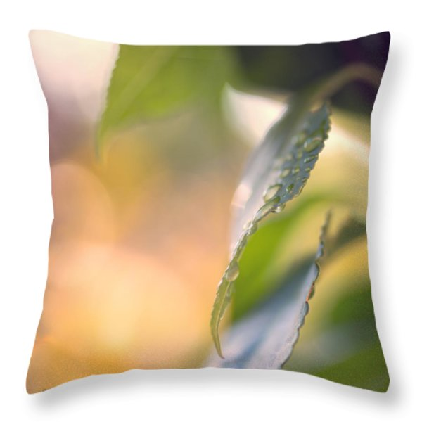 Raindrops Three Throw Pillow by Bob Orsillo