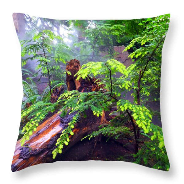 Rainforest Park In Vancouver British Columbia Throw Pillow by Carol  Lux Photography