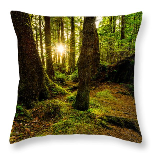 Rainforest Path Throw Pillow by Chad Dutson
