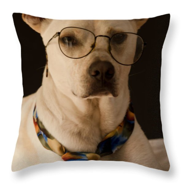 Rainy Days and Mondays Always Get Me Down Throw Pillow by Don Schwartz
