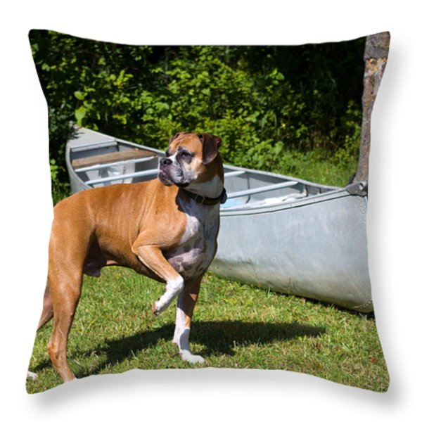 Ranger the Boxer Throw Pillow by Stephanie McDowell