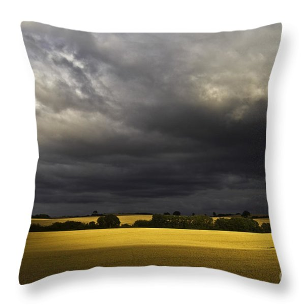 rapefield under dark sky Throw Pillow by Heiko Koehrer-Wagner