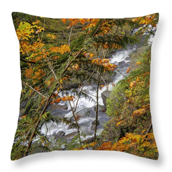 Rapids Through The Autumn Throw Pillow by Darleen Stry