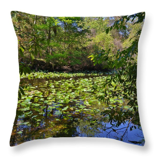 Ravine Gardens - A Different Look at Florida Throw Pillow by Christine Till