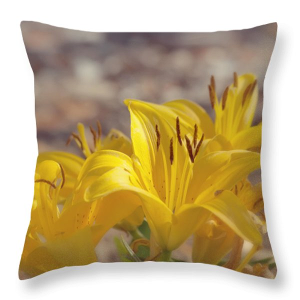 Reaching for the Light Throw Pillow by Kim Hojnacki