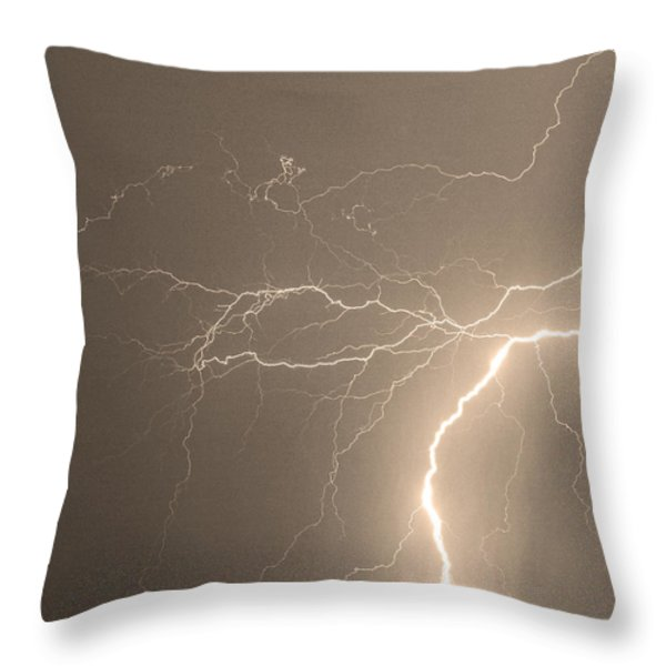 Reaching Out Touching Me Touching You Sepia Throw Pillow by James BO  Insogna