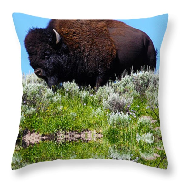 Ready For A Drink Throw Pillow by Shane Bechler