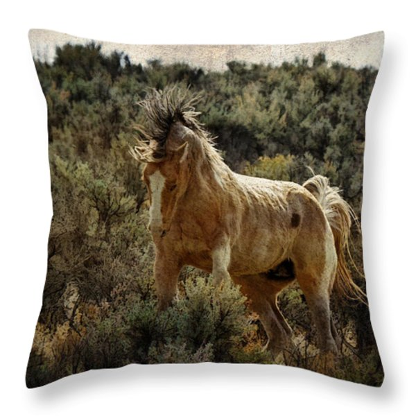Ready To Rumble D9637 Throw Pillow by Wes and Dotty Weber