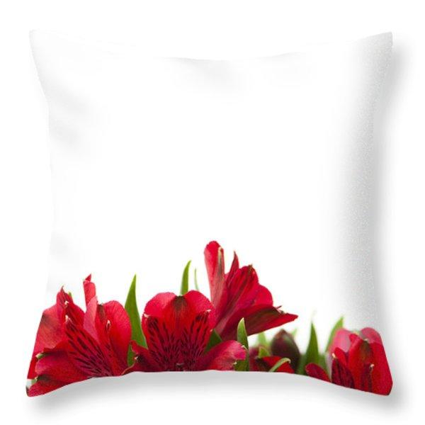 Red Alstroemeria Throw Pillow by Anne Gilbert