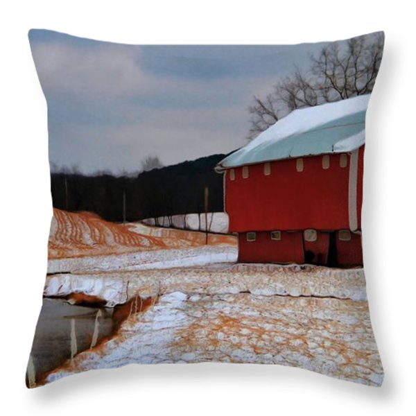 Red Amish Barn In Winter Throw Pillow by Dan Sproul