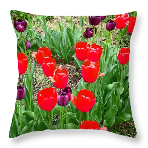 Red and Purple Tulips Throw Pillow by Aimee L Maher Photography and Art