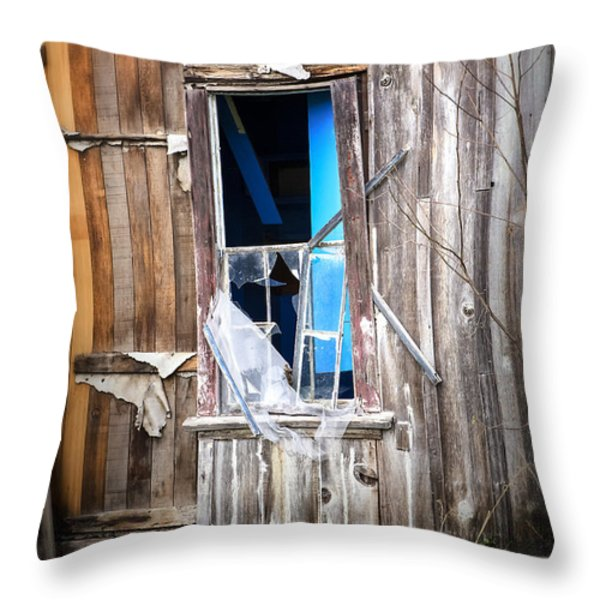 Red and White and Blue Throw Pillow by Caitlyn  Grasso