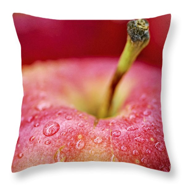 Red apple Throw Pillow by Elena Elisseeva