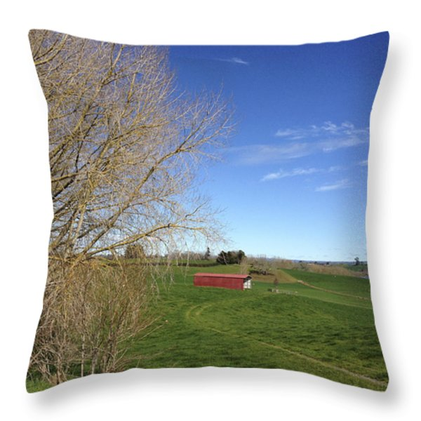 Red Barn Throw Pillow by Les Cunliffe