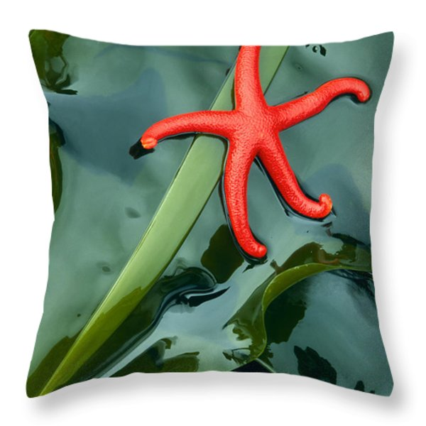 Red Bloodstar Throw Pillow by Inge Johnsson