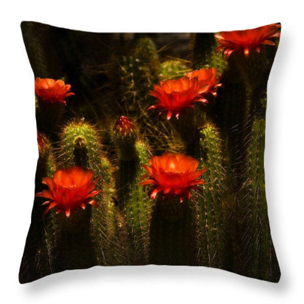 Red Cactus Flowers II  Throw Pillow by Saija  Lehtonen