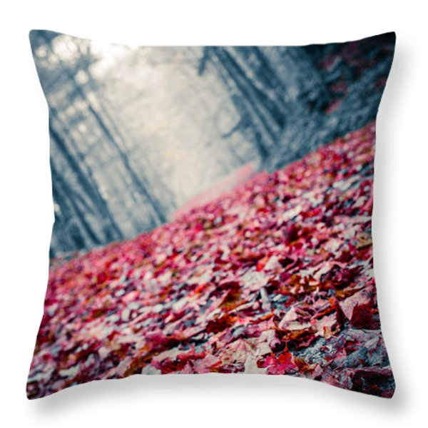 Red Carpet Throw Pillow by Edward Fielding