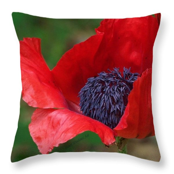 Red Carpet Rolled Out Throw Pillow by Kathleen Luther