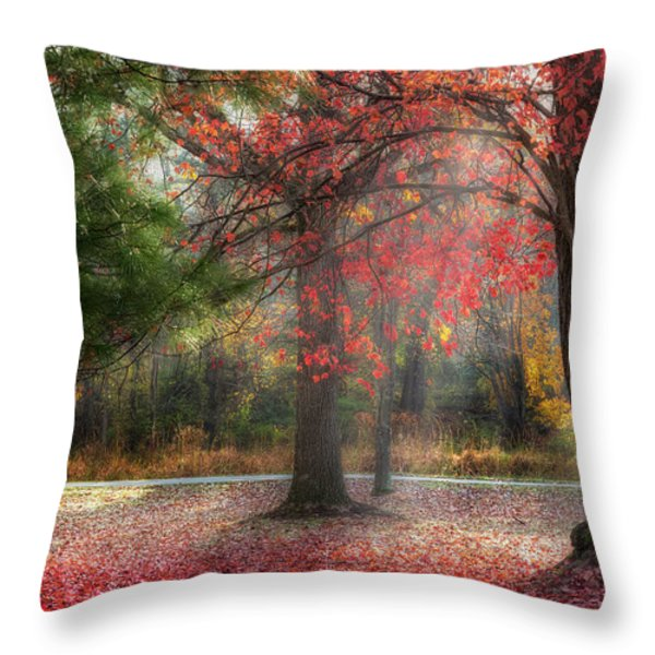 Red Dawn Throw Pillow by Bill  Wakeley