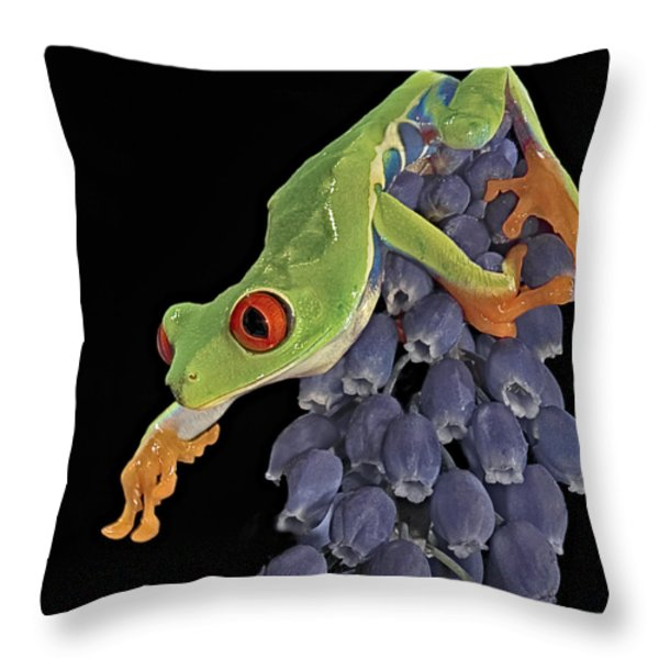 Red Eye  Throw Pillow by Susan Candelario