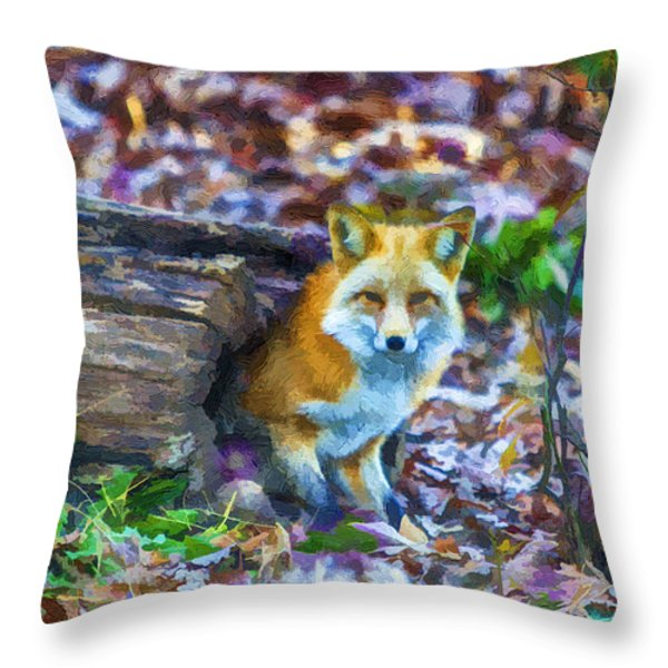 Red Fox at Home Throw Pillow by John Haldane