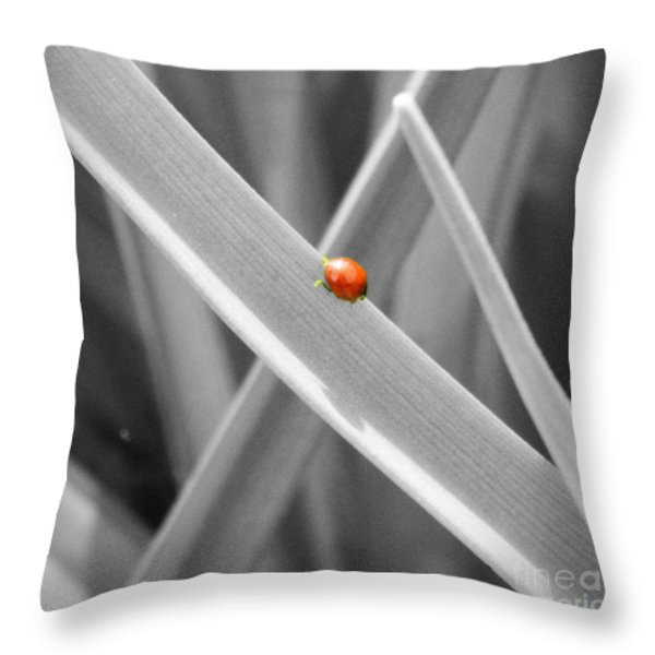 Red Ladybird Throw Pillow by Chalet Roome-Rigdon