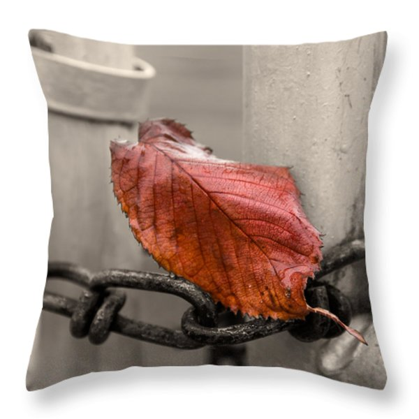 Red Leaf on Gate  Throw Pillow by Chris Tobias
