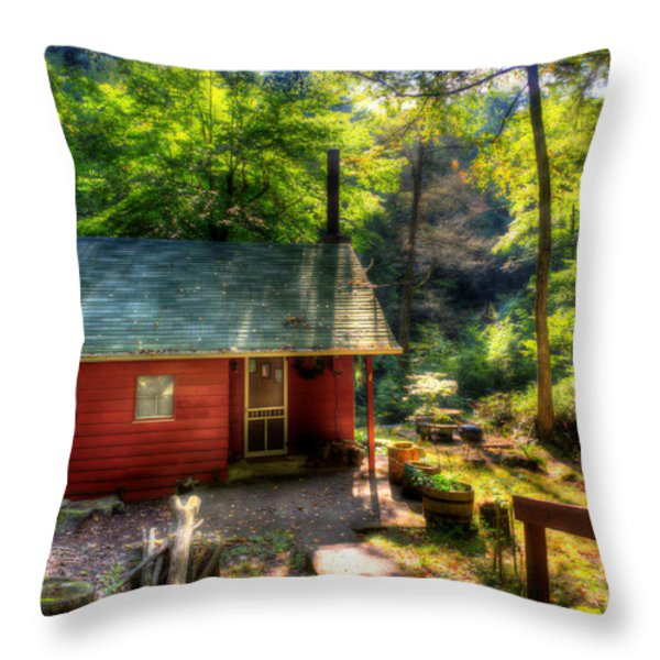 Red Mountain Home Throw Pillow by Dan Friend