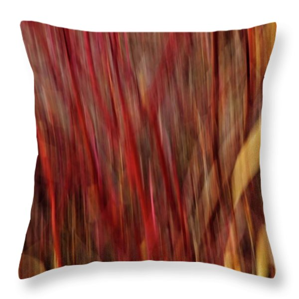Red Osier Dogwood Throw Pillow by Theresa Tahara