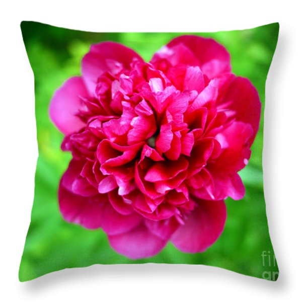 Red Peony Flower Throw Pillow by Edward Fielding