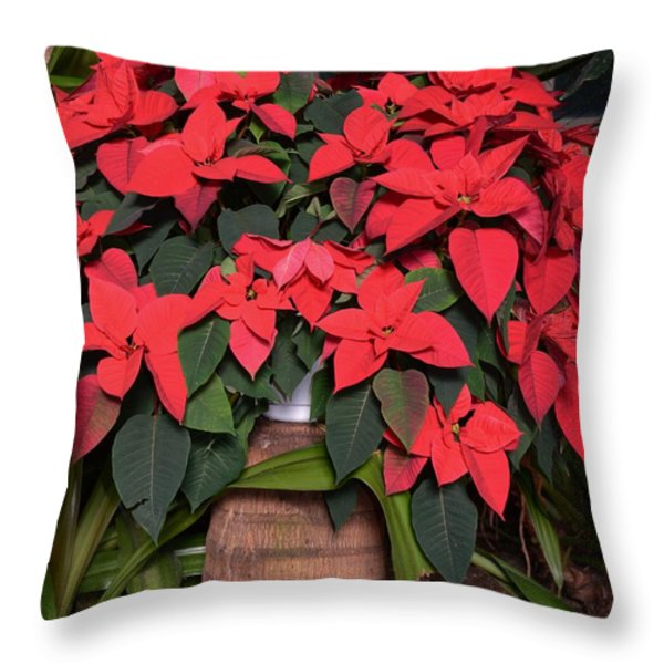 Red Poinsettia Throw Pillow by Kathleen Struckle