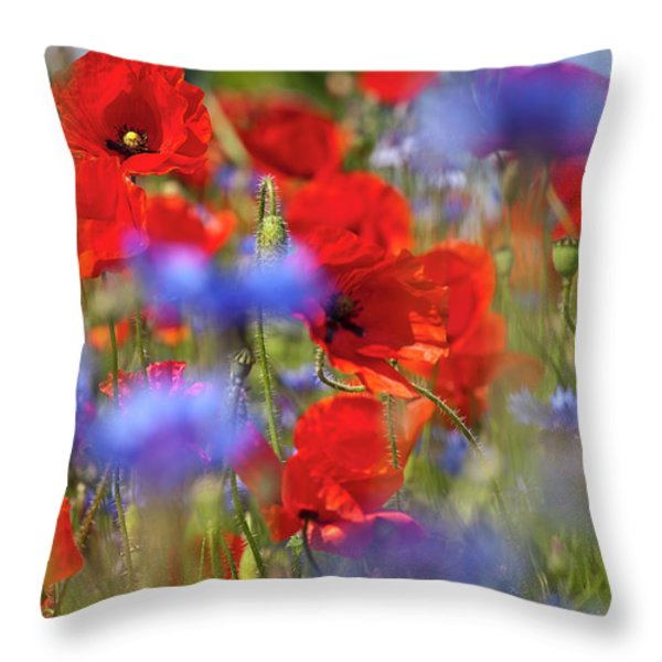 Red Poppies In The Maedow Throw Pillow by Heiko Koehrer-Wagner
