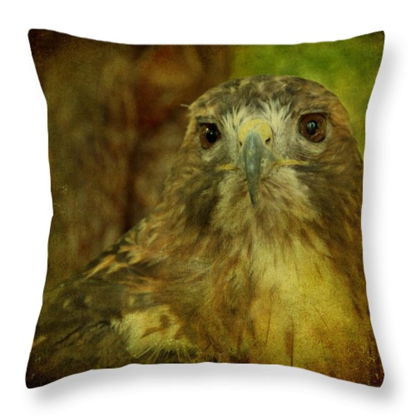 Red-tailed Hawk II Throw Pillow by Sandy Keeton