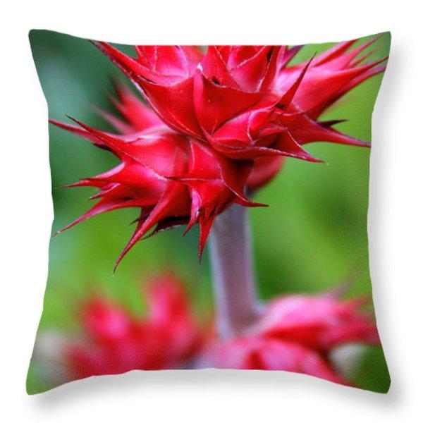 Red Tropical Flowers Throw Pillow by Karon Melillo DeVega