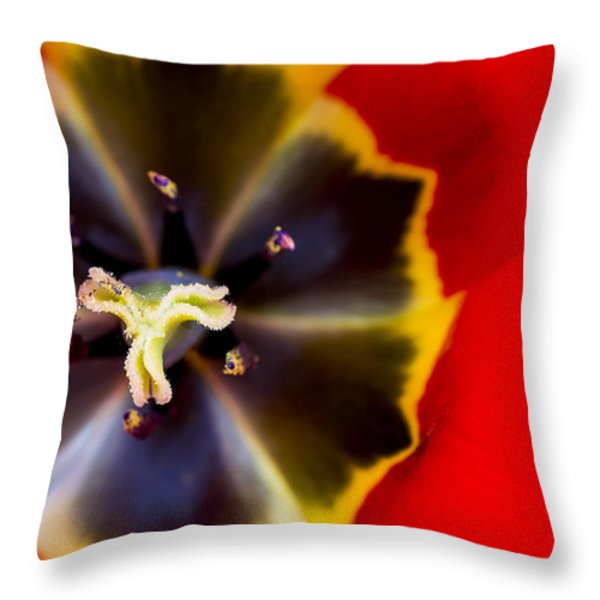 Red Tulip Macro Throw Pillow by Adam Romanowicz