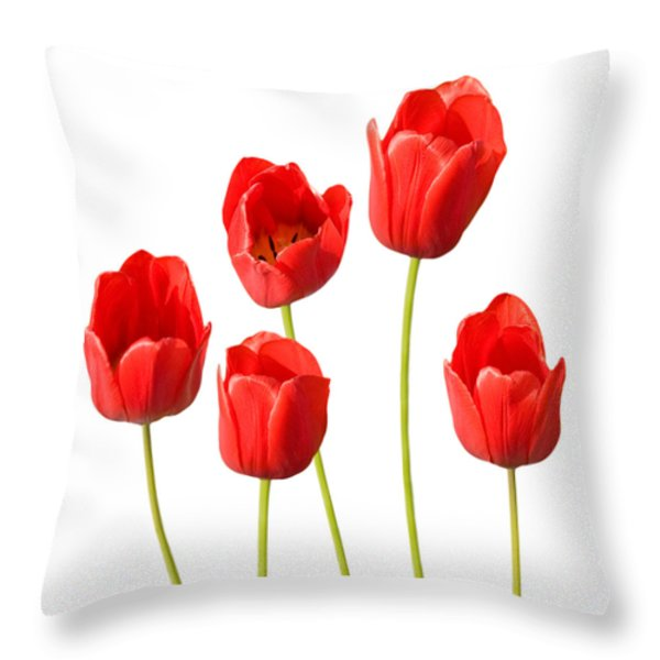 Red Tulips White Background Throw Pillow by Natalie Kinnear