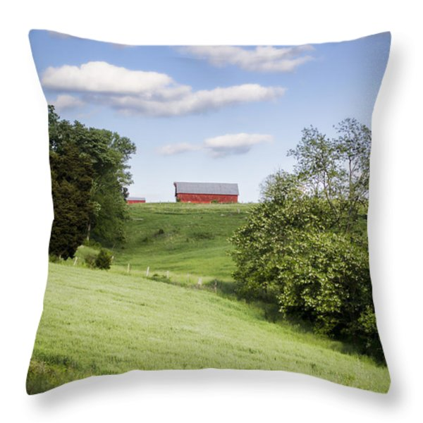 Red White And Blue Throw Pillow by Heather Applegate