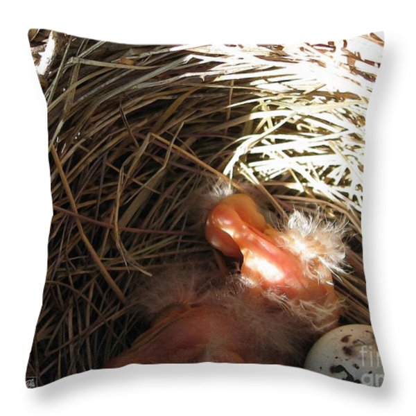 Red-winged Blackbird Babies and Egg Throw Pillow by J McCombie