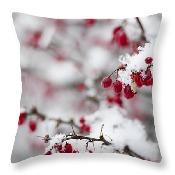 Red Winter Berries Under Snow Throw Pillow by Elena Elisseeva