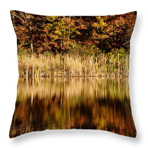 Refections In Water Throw Pillow by Dan Friend