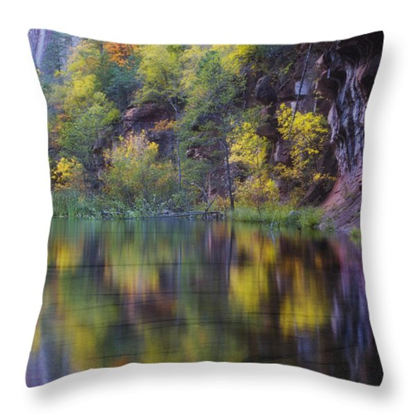 Reflected Fall Throw Pillow by Peter Coskun