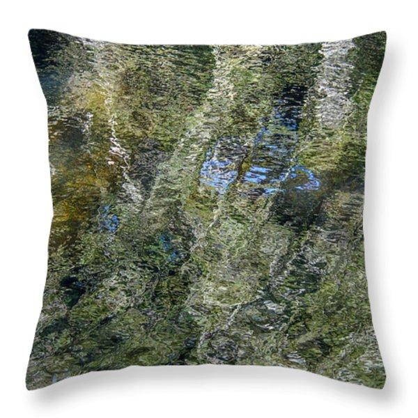 Reflection Art Throw Pillow by Roxy Hurtubise