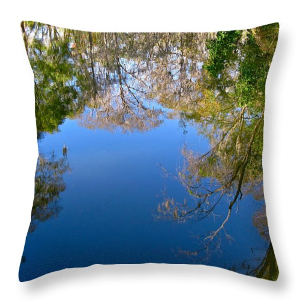 Reflection Throw Pillow by Denise Mazzocco