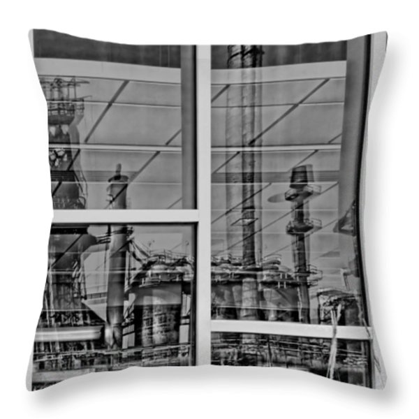 Reflection Throw Pillow by DJ Florek