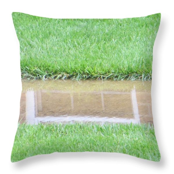 Reflection of Life Throw Pillow by Sonali Gangane