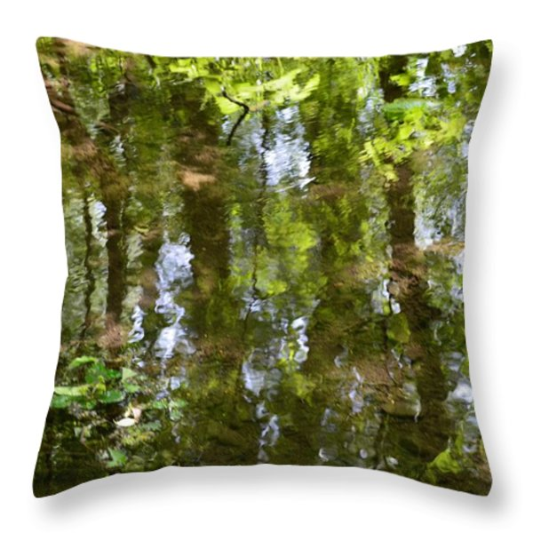 Reflection of woods Throw Pillow by Sonali Gangane
