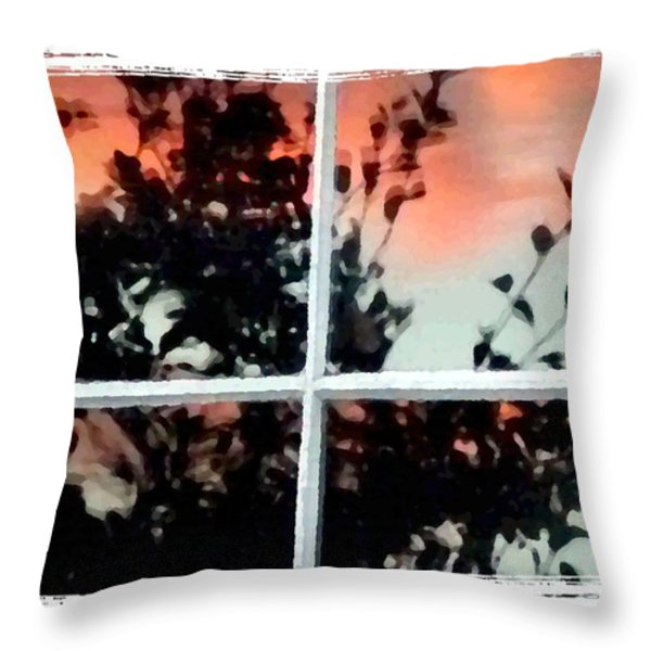Reflections In An Old Window Throw Pillow by Will Borden