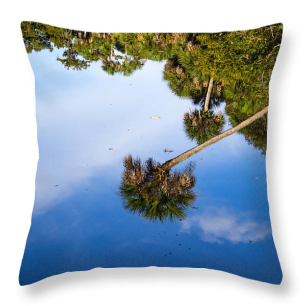 Reflections Throw Pillow by Lee Stewart