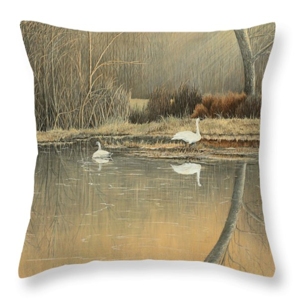 Reflections Throw Pillow by Mary Ann King