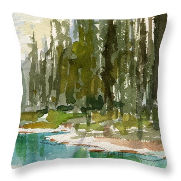 Reflections Throw Pillow by Mohamed Hirji